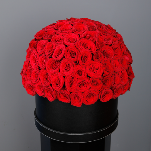 Box of Amazing Red Roses