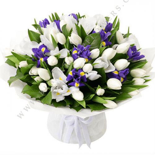 Fifty White Tulip | Blacktulipflowers.in