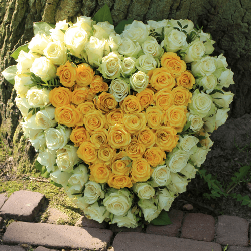 Heart Shape Yellow and White Flowers