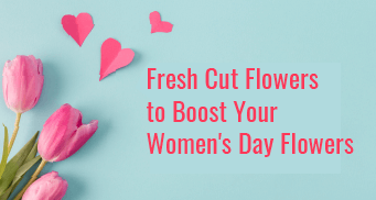 Fresh Cut Flowers to Boost Your Women's Day Flowers