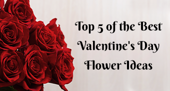 Top 5 of the Best Valentine's Day Flower Ideas
